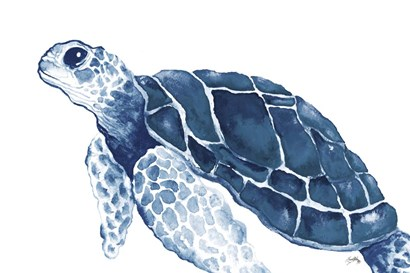 Turtle in the Blues by Elizabeth Medley art print