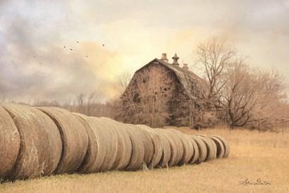 Good Day on the Farm by Lori Deiter art print