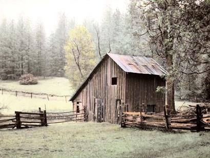 Barn near Sonora by Laura Culver art print