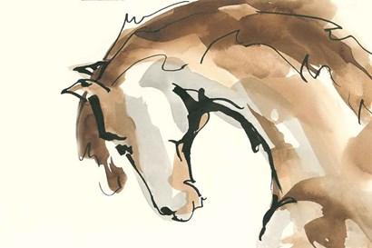 Horse Head II by Chris Paschke art print
