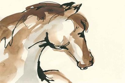 Horse Head I by Chris Paschke art print