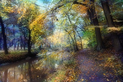 Autumn Walk by John Rivera art print