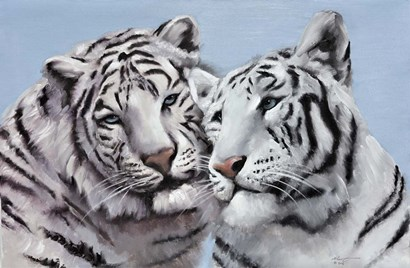 Loving White Tigers by D. Rusty Rust art print