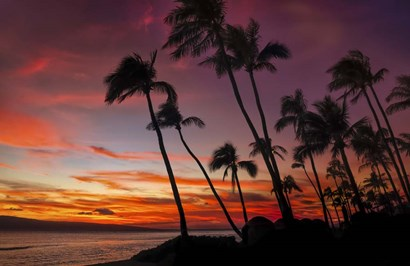 Maui Sunset by Jonathan Ross art print