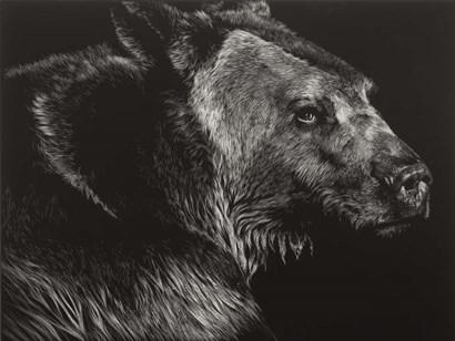 Wild Scratchboard II by Julie Chapman art print