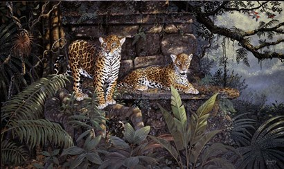 Jaguars by Terry Doughty art print