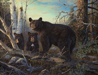 Absolutely Wild by Terry Doughty art print