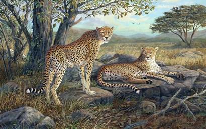 Savanna Retreat by Terry Doughty art print