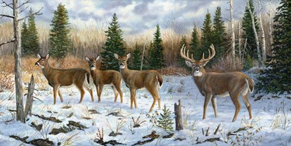 On Alert by Terry Doughty art print