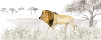 Serengeti Lion horizontal panel by Tara Reed art print