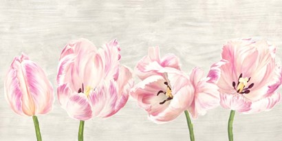Classic Tulips by Jenny Thomlinson art print