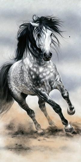 Glorious Grey by Lesley Harrison art print