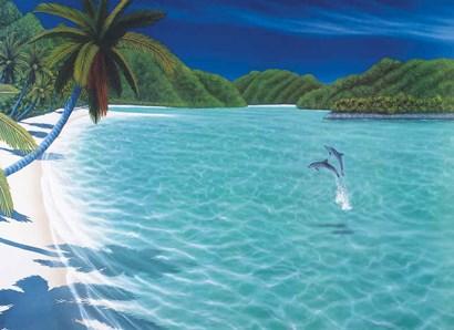 Trunk Bay by Dan Mackin art print