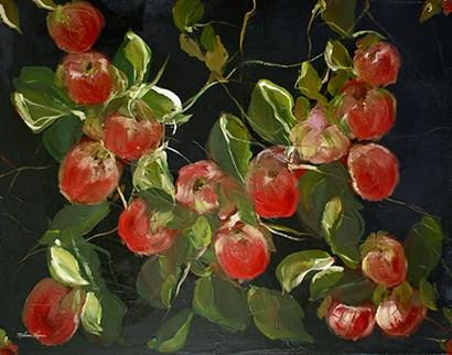Apples by Melissa Lyons art print