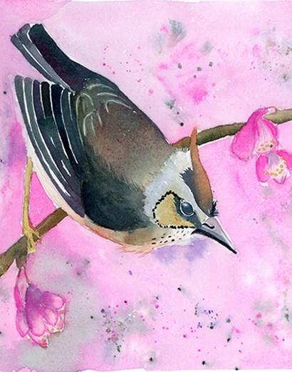 Pink Floral by Olga Shefranov art print