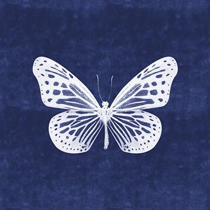White Butterfly II by Linda Woods art print