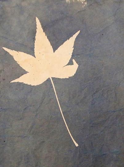 Blue I by Yellow Café art print