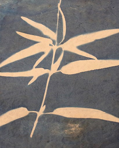 Blue XIII by Yellow Café art print