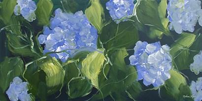 Hydrangeas by Melissa Lyons art print