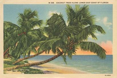 Florida Postcard III by Wild Apple Portfolio art print