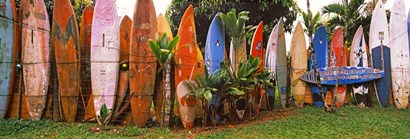 Arranged Surfboards, Maui, Hawaii by Panoramic Images art print