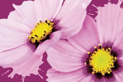 Flower Pop landscape II by Marie-Elaine Cusson art print
