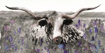 Longhorn in Flower Field by Stellar Design Studio art print