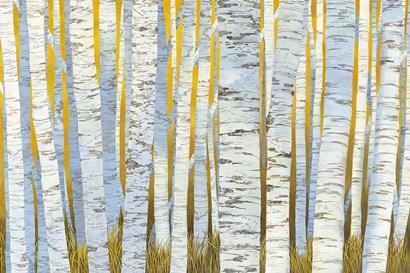 Aspen Grove by Kathrine Lovell art print