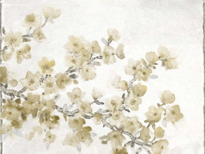 Neutral Cherry Blossom Composition II by Timothy O'Toole art print