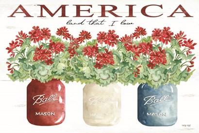 America Glass Jars by Cindy Jacobs art print