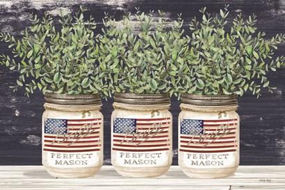 Patriotic Glass Jar Trio II by Cindy Jacobs art print