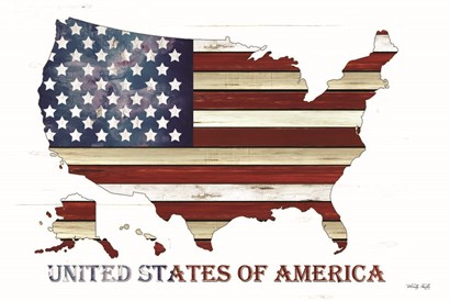 United States of America by Cindy Jacobs art print