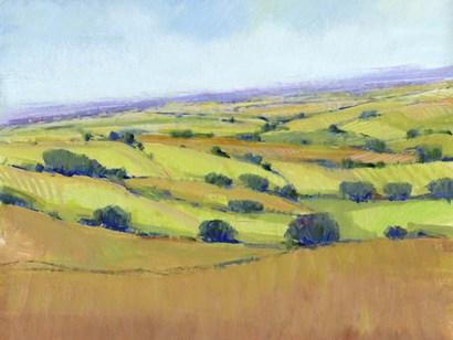 Patchwork Vista I by Timothy O'Toole art print