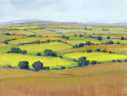 Patchwork Vista II by Timothy O'Toole art print