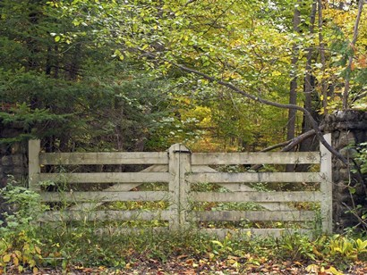 Gate And Country Path by Clive Branson art print