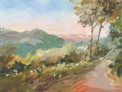 Valley Views by Danhui Nai art print