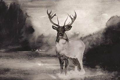 Bull in Forest 1 by Stellar Design Studio art print