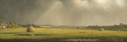 Sun and Rain by Seven Trees Design art print
