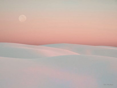 Moon and Dunes by Seven Trees Design art print