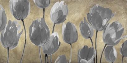 Grey Tulips by Luca Villa art print