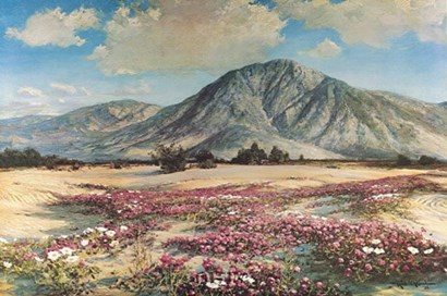 Desert in Spring by Robert Wood art print