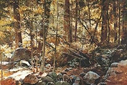Sunlit Forest (Yosemite) by Jerome Grimmer art print