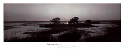 South Carolina Shore by Richard D'amore art print