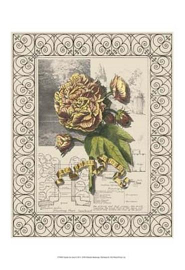 Garden for June II by Deborah Bookman art print