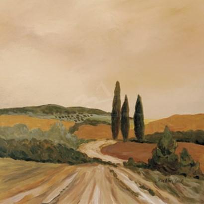 Shady Tuscan Fields by John Clark art print