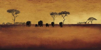 Serengeti II by Tandi Venter art print