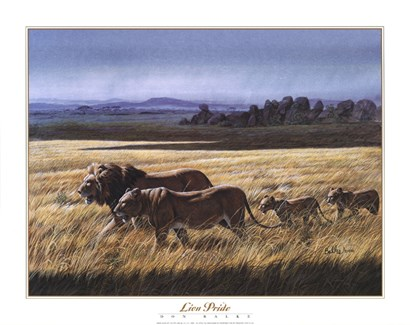 Lion Pride by Don Balke art print