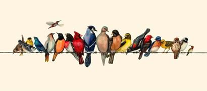 Bird Menagerie III by Wendy Russell art print