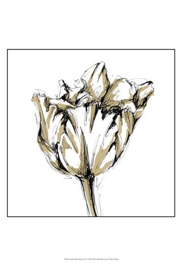 Small Tulip Sketch I by Ethan Harper art print