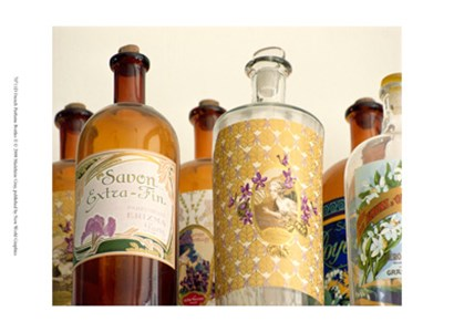 French Perfume Bottles II by Madelaine Gray art print
